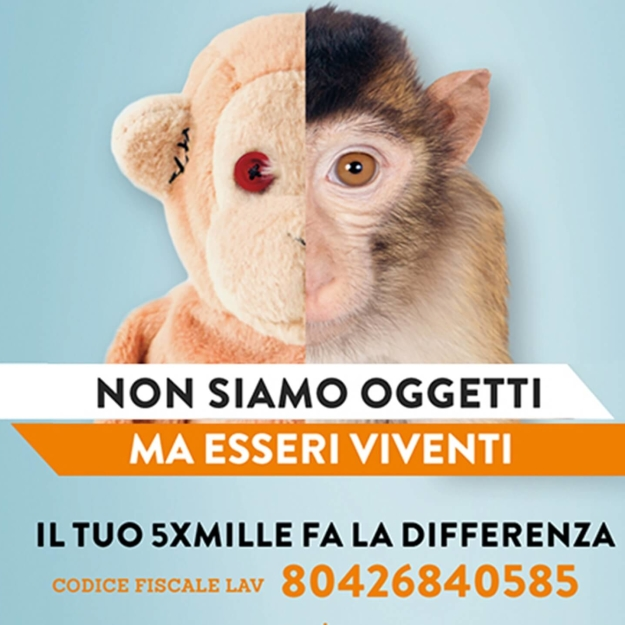 Campagna integrata 5x1000 multisoggetto per LAV